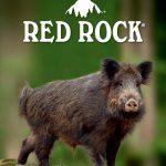 Catalogo Red Rock Abiti ed accessori per la caccia 2020 – 2021