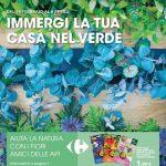 Carrefour Giardinaggio al 6 Aprile 2021